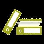 audit files_olive